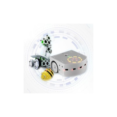Educational robots for elementary school
